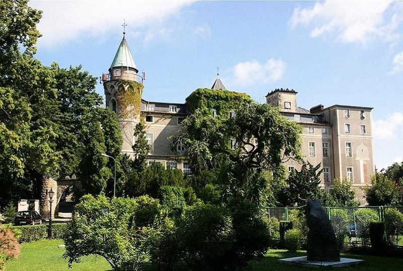 Zamek Leśna 2
