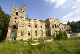 Pałac von Boninów w Dreżewie