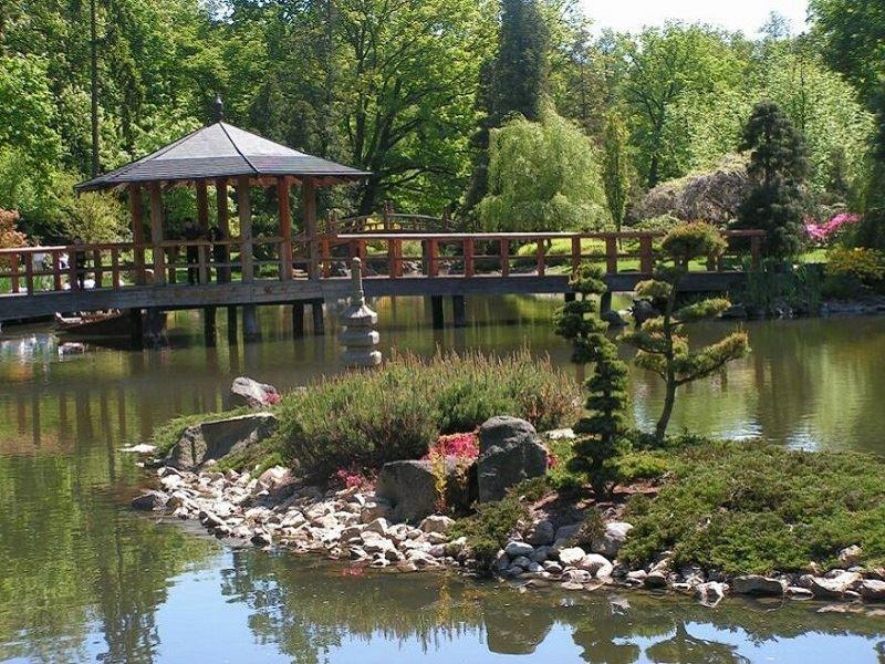 Ogród Japoński 1