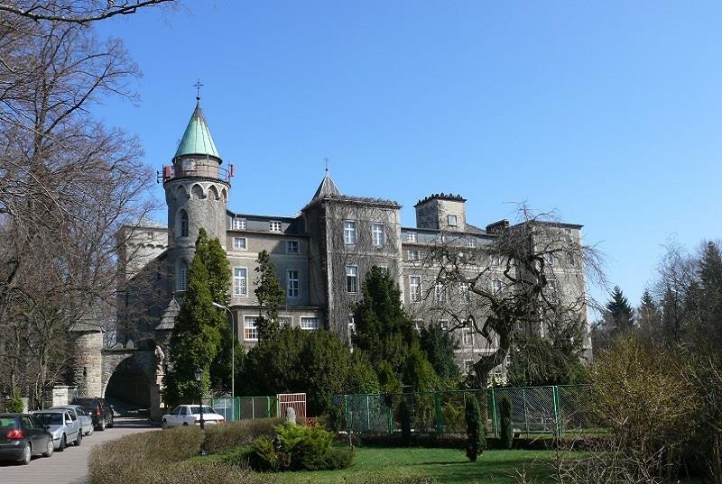 Zamek Leśna 1