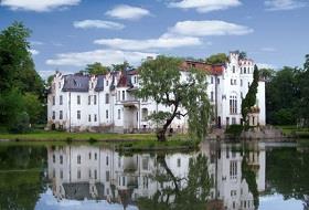 Pałac w Dobrocinie