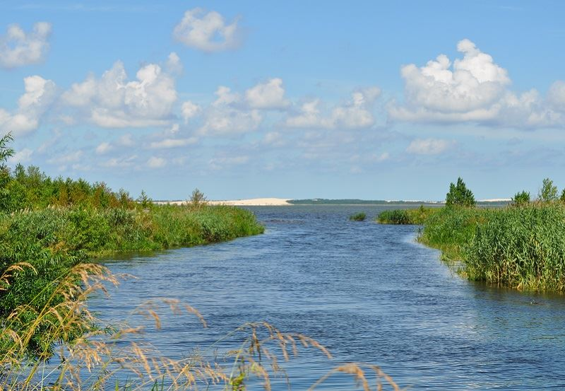 Jezioro Łebsko 1