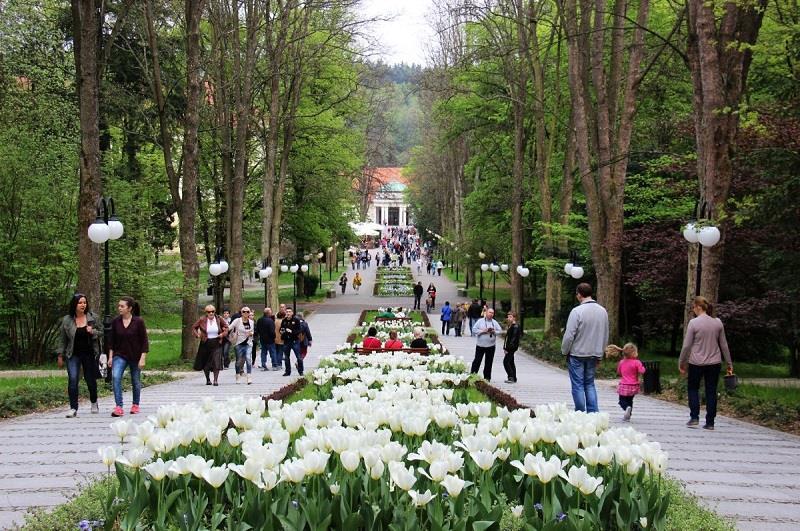 Park Zdrojowy Polanica 3