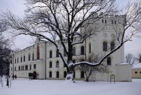 Stary Zamek w Żywcu