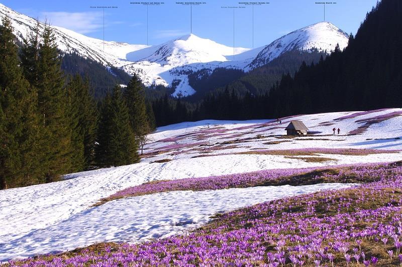 Tatrzański Park Narodowy 1