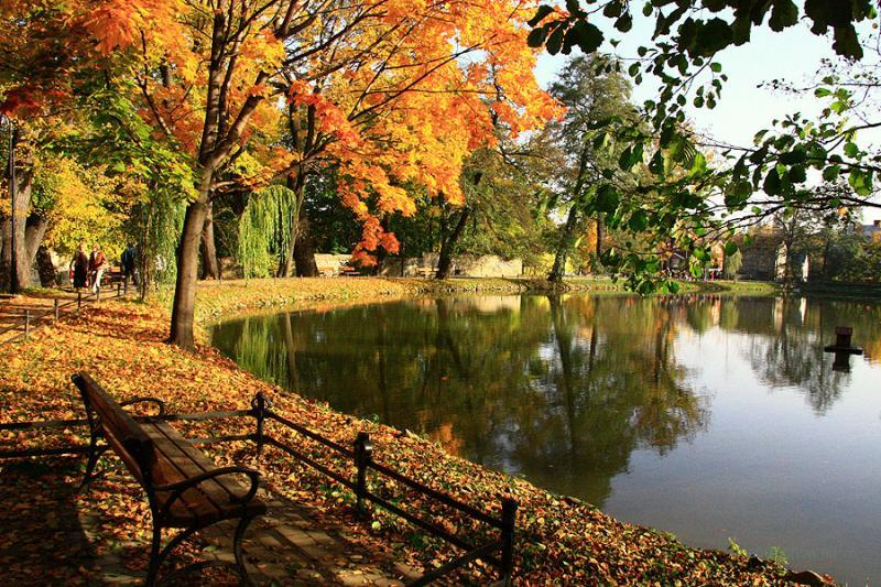 Park Miejski Andrychów 2